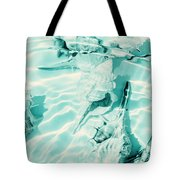 Shell Shallows Tote Bag