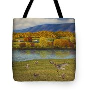 Shenandoah Valley Hawk Tote Bag