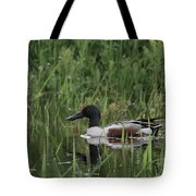 Shovel Tail In Shallows Tote Bag