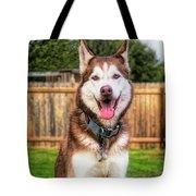 Siberian Husky Digital Art A030819 Tote Bag by Mas Art Studio