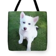Siberian Husky Puppy A030619 Tote Bag by Mas Art Studio