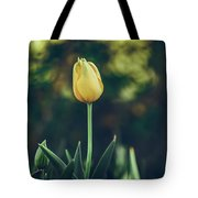 Silence Is Golden Tote Bag by Dheeraj Mutha
