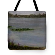 Silver Lake During The Wildfires Tote Bag by J Reynolds Dail