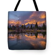 Snake River Glory Tote Bag