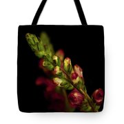 Snapdragon In Red Tote Bag