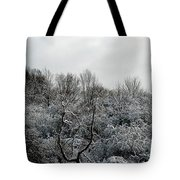 Snow Covered Trees Tote Bag by Rose Santuci-Sofranko
