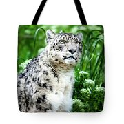 Snow Leopard, Leopard Art, Animal Decor, Nursery Decor, Game Room Decor,  Tote Bag by David Millenheft