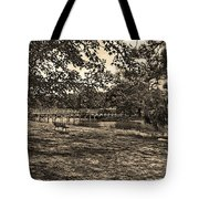 Solitude In Black And White With Sepia Tones Tote Bag