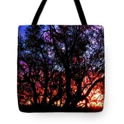 Sonoran Sunrise Ironwood Silhouette Tote Bag