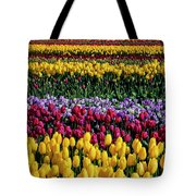 Spectacular Rows Of Colorful Tulips Tote Bag
