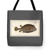 Spotted Trunk Fish  Tote Bag