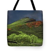 Spring Storm At Milepost 84 Tote Bag