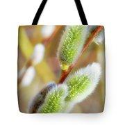 Spring Willow 4 Tote Bag