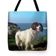 Springer Spaniel Dog In Sennen Cove Tote Bag