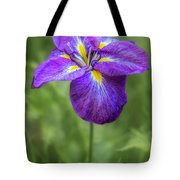 Standing Its Ground By Tl Wilson Photography Tote Bag by Teresa Wilson