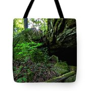 Starburst In The Woods Tote Bag