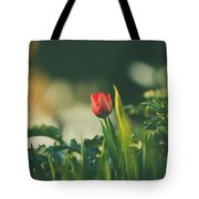 Start Of Spring Tote Bag by Dheeraj Mutha