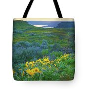 Steamboat Rock 01 Tote Bag