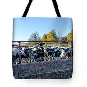 Steers Tote Bag