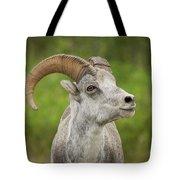 Stone's Sheep Tote Bag