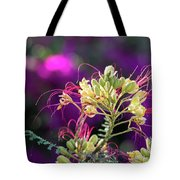 Stream Of Colored Highlights Leads To Yellow Bird Of Paradise Tote Bag