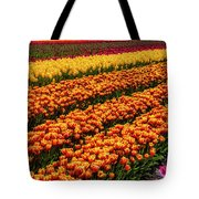 Stunning Rows Of Colorful Tulips Tote Bag