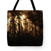 Sultry Morning Radiance Tote Bag