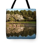 Summer Reflections Tote Bag