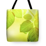 Summer Sun IIi Tote Bag by Anne Leven