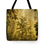 Sunbeams In The Foggy Forest #3 Tote Bag
