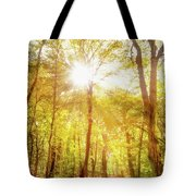 Sunbeams In The Forest Tote Bag