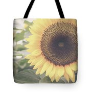 Sunflower Haze Tote Bag