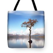 Sunny Afternoon On Loch Lomond Tote Bag