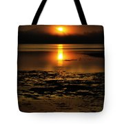 Sunrise Rathtrevor Beach 6 Tote Bag