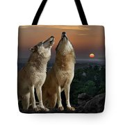 Sunset Harmony Tote Bag