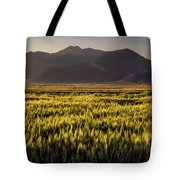 Sunset Over Wheat Tote Bag