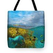 Surf Parrotfish, Damselfish And Basslet Tote Bag