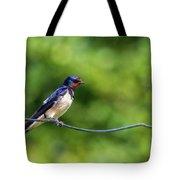 Swallow  Hirundo Rustica  Tote Bag