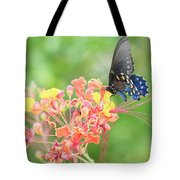 Swallowtail Butterfly Wings  Tote Bag
