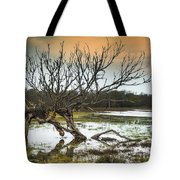 Swamp And Dead Tree Tote Bag