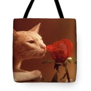 Taffy Tote Bag