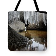 Tahoe Today Tote Bag by Sean Sarsfield