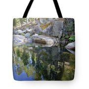 Take In Your Surroundings Tote Bag by Sean Sarsfield