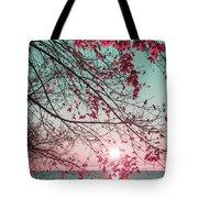 Teal And Fuchsia - Autumn Sunrise Reimagined Tote Bag