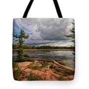 The Artistic Cranberry Bog Tote Bag