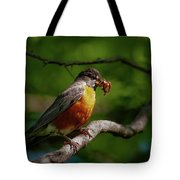 The Early Bird Tote Bag by Jeff Phillippi