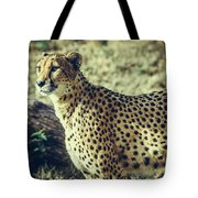 The Flash Tote Bag by Dheeraj Mutha