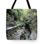 The Gorge Trail Tote Bag
