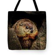 The Groundhog Tote Bag by Bob Orsillo