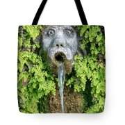 The Hundred Fountains Tote Bag